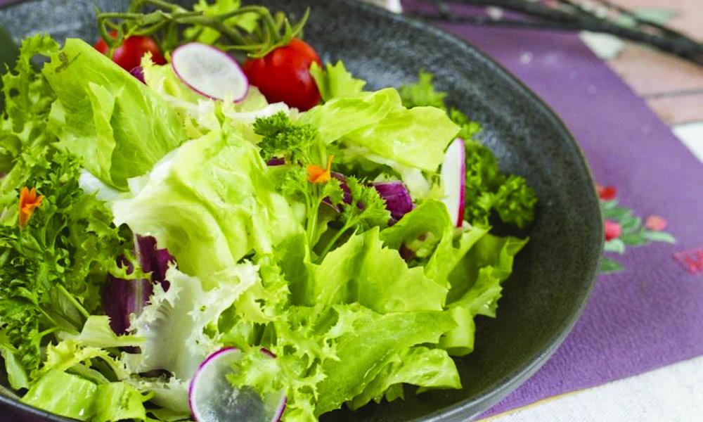 Risultati immagini per insalata mista